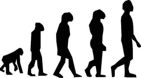 USB 進化
