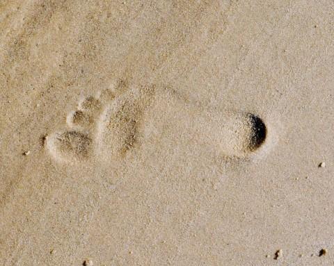 footprint-285191_640